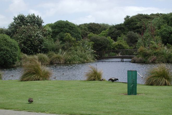 Nga Manu Nature Reserve, Waikanae, New Zealand