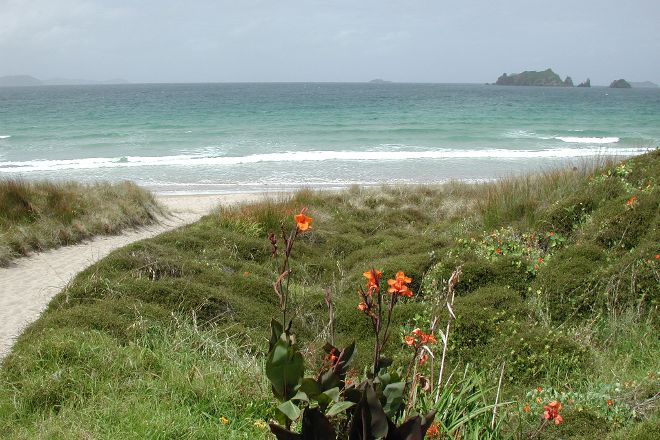 Opito Bay Beach, Kuaotunu, New Zealand