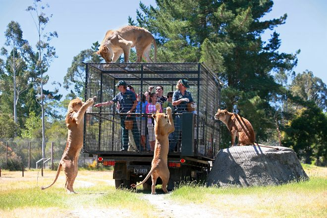 Orana Wildlife Park, Christchurch, New Zealand