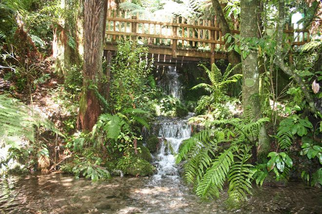 Paradise Valley Springs Wildlife Park, Rotorua, New Zealand