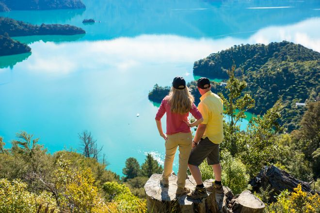 Queen Charlotte Track, Picton, New Zealand
