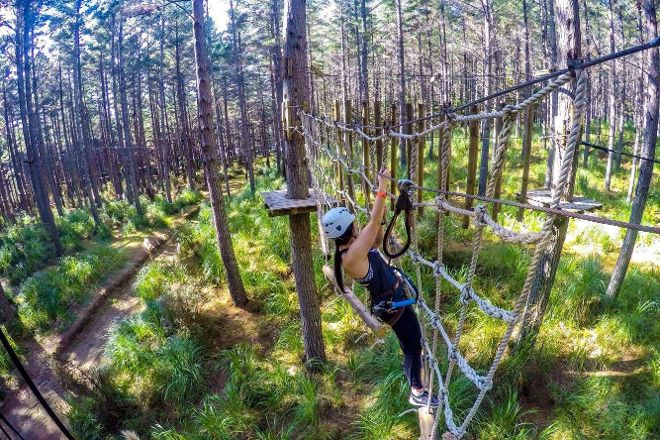 Tree Adventures, Woodhill, New Zealand