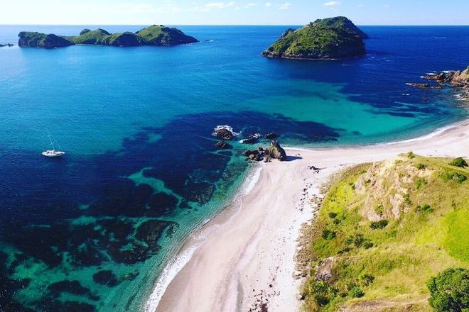 Vigilant Yacht Charters, Russell, New Zealand