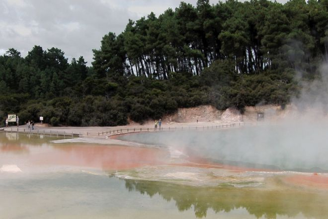 Waiotapu Boardwalk/ Mud Pool, Wai-O-Tapu, New Zealand