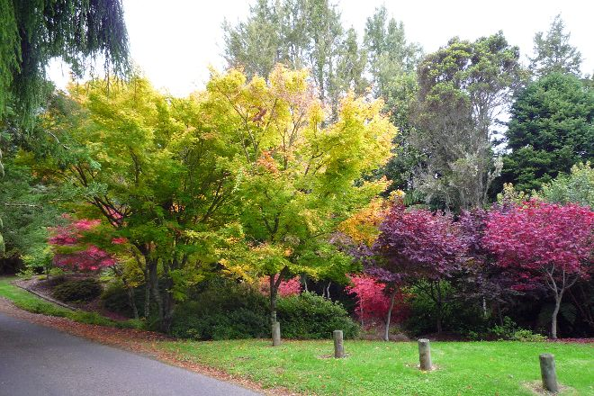 Waipahihi Botanical Gardens, Taupo, New Zealand