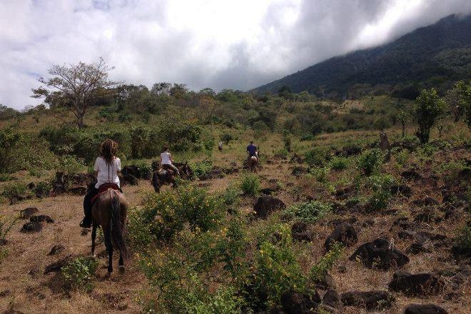 Haris'horses, Isla de Ometepe, Nicaragua