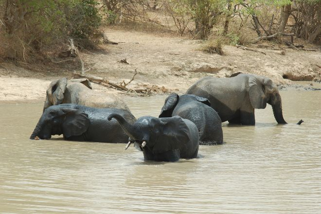 W National Park, Benin City, Nigeria
