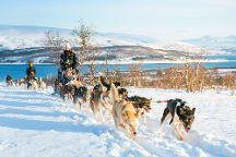 Tromso Wilderness Centre