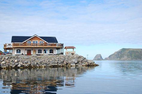 Barents Birdcruise Day Trips, Gjesvaer, Norway