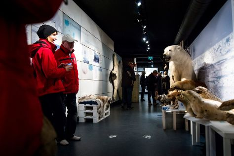 The Polar Bear Society, Hammerfest, Norway