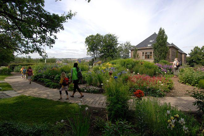 Botanical Gardens (Botanisk Hage og Museum), Oslo, Norway