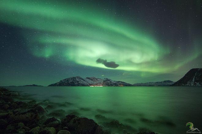 Enjoy the Arctic, Tromso, Norway