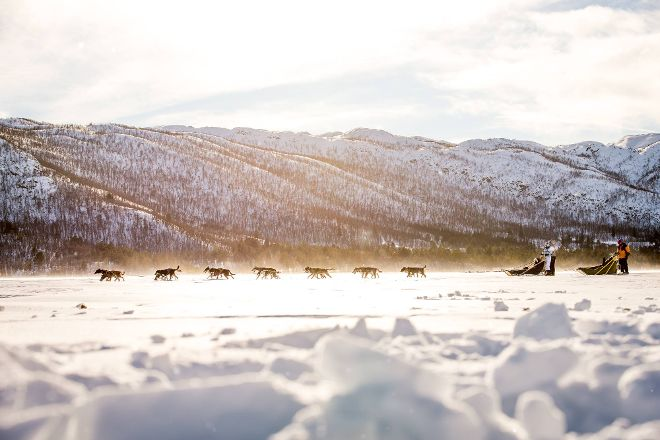 Geilo Dogsledding, Geilo, Norway