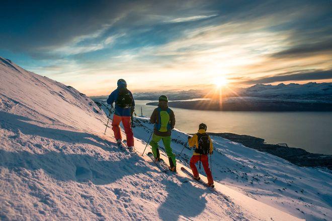 Narvikfjellet, Narvik, Norway