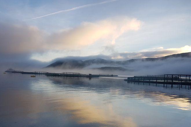 Salmon Senter, Bodo, Norway