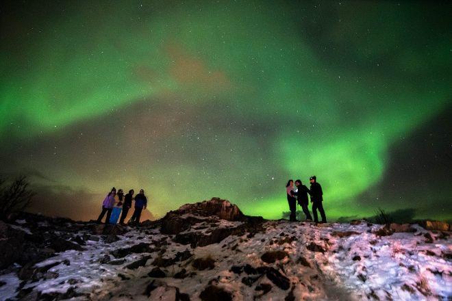 The Aurora Tour - Day Tours, Tromso, Norway