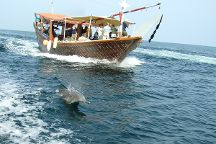 The Dolphin Travel & Tourism - Day Tours