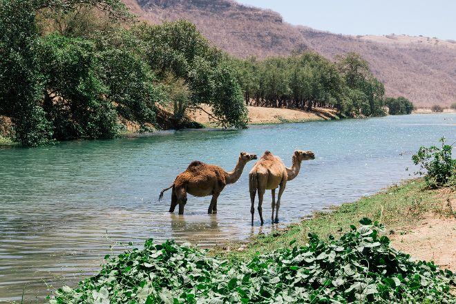Wadi Darbat, Salalah, Oman