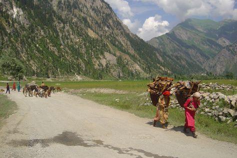 Gurez Valley (Kel to Taobat), Kel, Pakistan