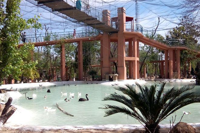 Bird Aviary, Islamabad, Pakistan