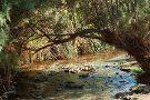 Enot Tsukim Nature Reserve - Ein Feshkha