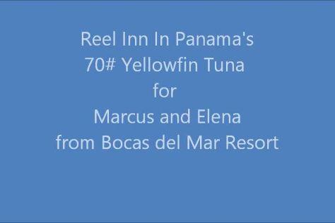 Reel Inn In Panama, Boca Chica, Panama
