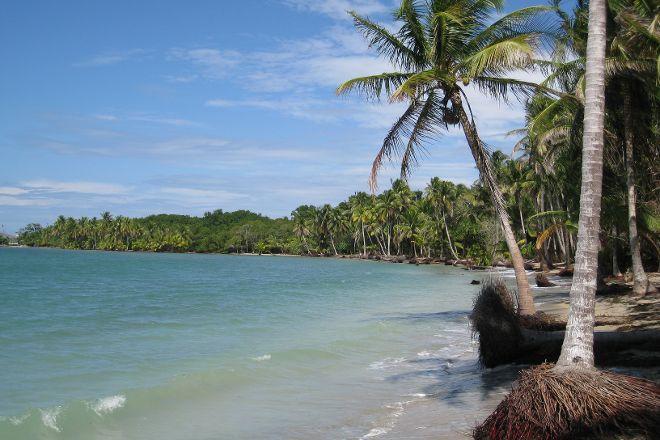 Boca del Drago, Bocas Town, Panama