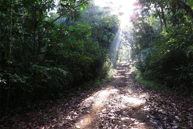 Pipeline Trail, Boquete, Panama
