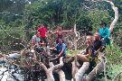 Amazon Green Treasure