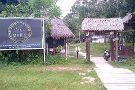 Amazon Rescue Center