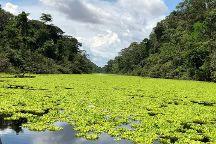 Amazon Wonder Expeditions