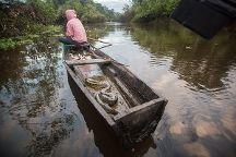 Yakumama Amazon Tours, Iquitos, Peru