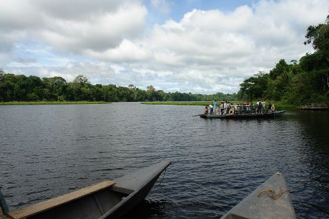 Tres Chimbadas Lake, Tambopata National Reserve, Peru