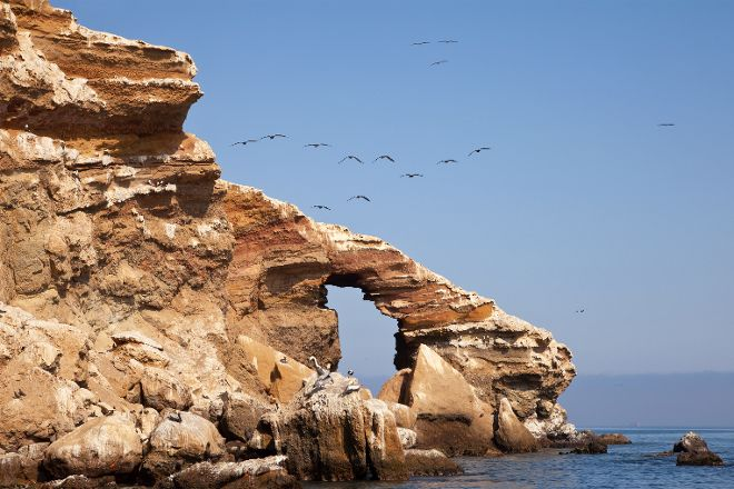Ballestas Islands, Pisco, Peru