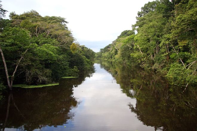 Dawn on the Amazon Tours and Cruises, Iquitos, Peru