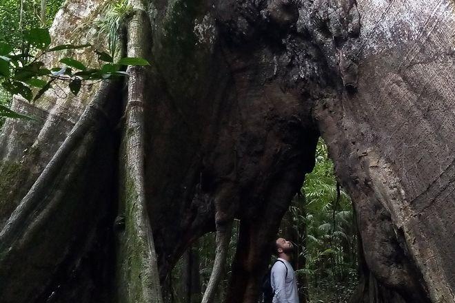Roger Tours, Iquitos, Peru