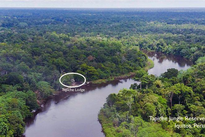 Tapiche Reserve, Iquitos, Peru
