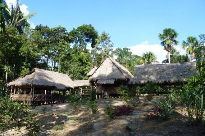 Yacu Puma Center, Iquitos, Peru