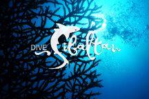 Dive Sibaltan