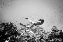 Freedive Boracay