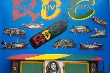 Reggae Dive Center