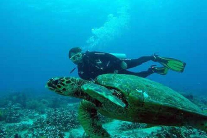 Johnnys Dive'n'fun, Mambajao, Philippines