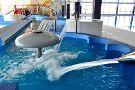 Aquapark H2Ostrog