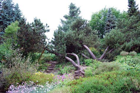 Arboretum SGGW, Brzeziny, Poland