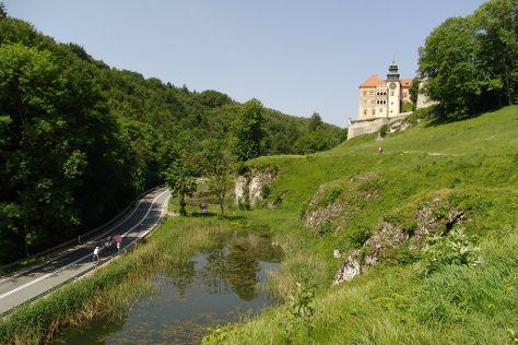 Zamek Królewski, Suloszowa, Poland