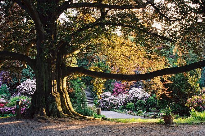 Arboretum Wojslawice, Niemcza, Poland