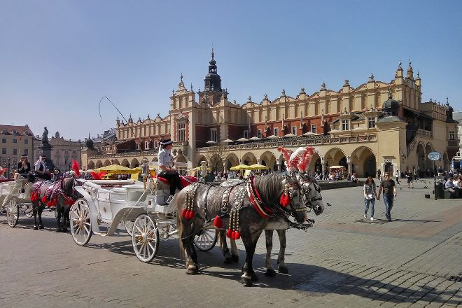 Poland Active - Day Tours, Krakow, Poland