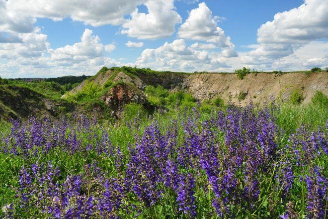 Wietrznia Nature Reserve (Rezerwat Przyrody Wietrznia), Kielce, Poland