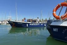 BlueFleet - Boat Trips and Tours