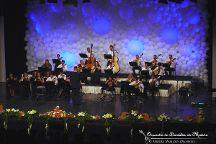 Madeira Mandolin Orchestra, Funchal, Portugal